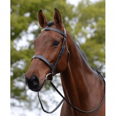 Kincade Hunt Cavesson Bridle with Reins